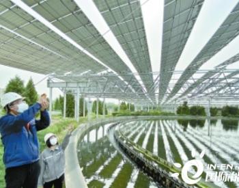 北京三座<em>再生水</em>厂可年发电2000万度