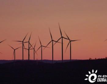 獨家翻譯 | 200MW!AGL澳大利亞新南威爾士州風電場滿負荷發電