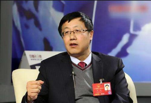 金风科技董事长武钢:国家应发行可再生能源补贴