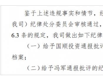 国顺投资遭股转通报批评:<em>违规担保</em>2.4亿元未及时披露