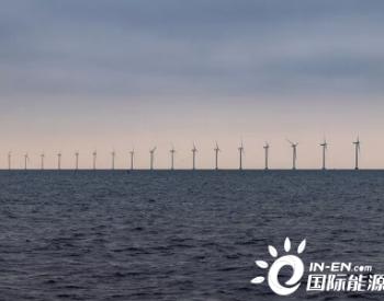 丹麦560MW海上风电项目8年后终获环评绿灯