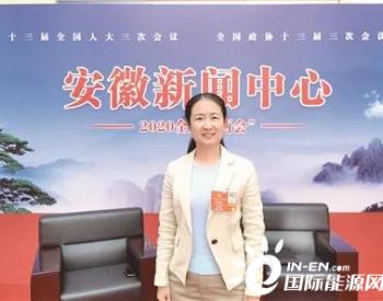 全国人大代表、皖能合肥发电有限公司张宏妹谈煤电