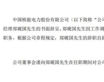 中国核电副总经理郑砚国辞职 2019年薪酬96万元