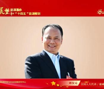 刘汉元:建议国家制定更具前瞻性的可