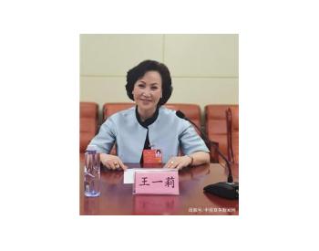 第十三届全国政协委员、中能国电集团董事局主席王一莉:加强对可可西里生态环境保护...