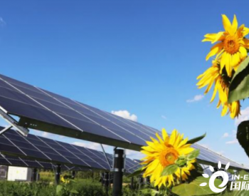 三峡新能源西北分公司单日发电量刷新历史记录