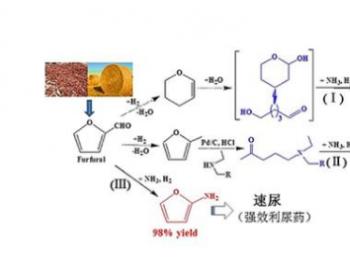 黄志威组在<em>生物质</em>基C5含氮药物中间体合成方面取得进展