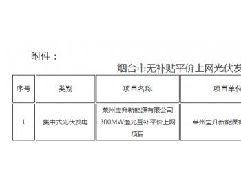 山东烟台:光伏发电项目<em>平价上网</em>确认公告(2020年6月份第1批)