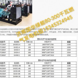 国华绿能80-300千瓦燃气发电机组