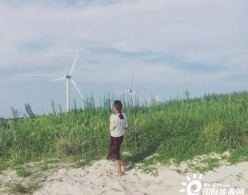 我国最大风力发电基地,白色风车成路边靓丽风景