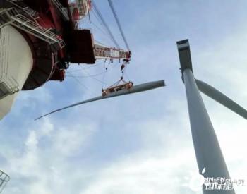 云杉清能江苏如东H5#海上风电项目首台风机吊装