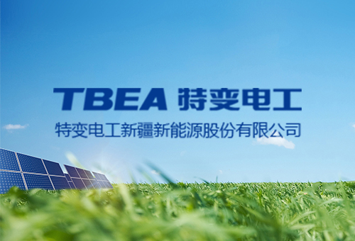 特变电工新疆能源股份有限公司