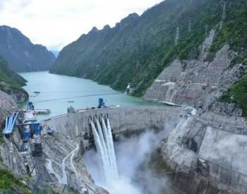 三峽/中水/ACS聯袂競標的水電項目內部收益率為多少?
