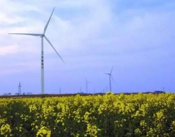 并网风电4053亿千瓦时!中电联发布中国电力行业年度发展报告2020