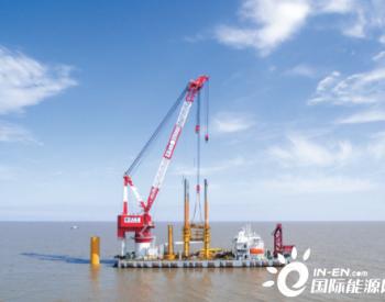 800MW全面启动!三峡新能源江苏如东项目全面施工
