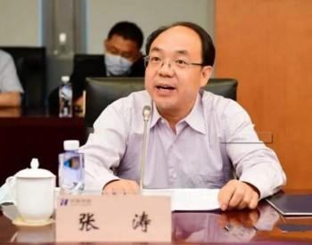 原中国核电总经理张涛任华能集团副总工程师、