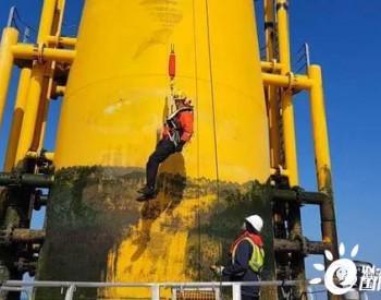 苏格兰<em>海上风电</em>免爬梯获得当地政府25万英镑支持