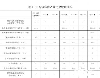全文|山东省<em>氢能产业</em>中长期发展规划(2020-2030年)
