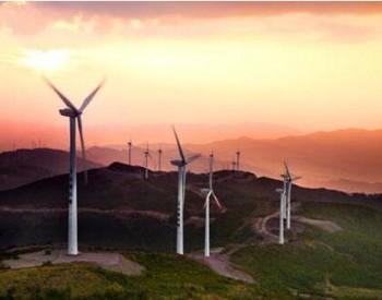 全球最大海上风电开发商沃旭集团首席执行官宣布辞职