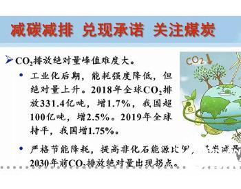 """李毅中:防止<em>煤化工</em>、煤制氢盲目发展,不可""""逢煤必化"""""""