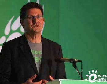 独家翻译|<em>爱尔兰</em>绿党领袖Ryan担任新联合政府能源部长