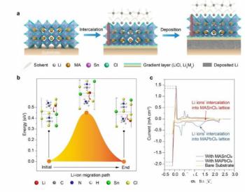 金属卤化物<em>钙钛</em>矿大幅提升锂电池循环稳定性