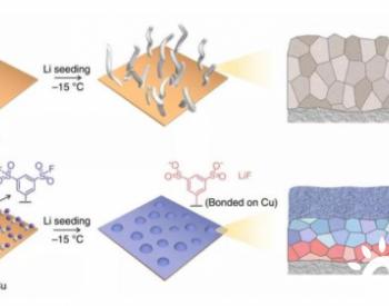 电化学活性单层膜诱导SEI用于低温高倍率锂金属电池