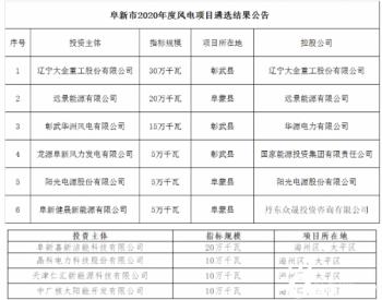 遠景、陽光電源、<em>國能投</em>、大金重工等分羹遼寧阜新市800MW風電項目