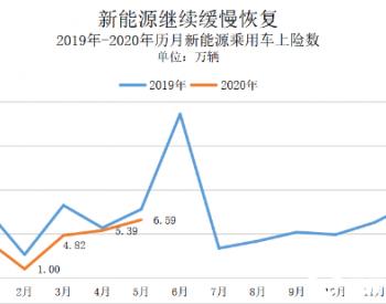 私人<em>纯</em>电市场持续扩大,特斯拉拿下近1/3市场