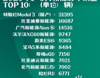 2020年1-5月:<em>新能源</em>车销量榜单TOP 10