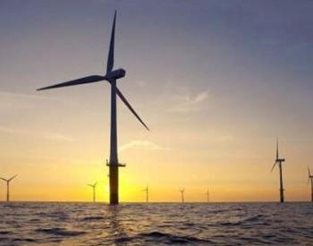 中标 上海电气中标100MW风电项目