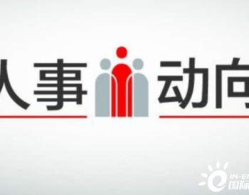 """""""70后""""张少峰任中石化集团总会计师、党组成员"""
