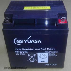 日本GSYUASA蓄电池PE6v8./6V8.0AH参数说明