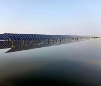300MW!单体规模最大的渔光互补项目并网!