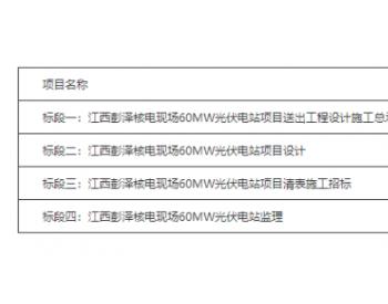 中标 国家电投集团江西<em>核电</em>有限公司2020年第一批集中招标公告(光伏)