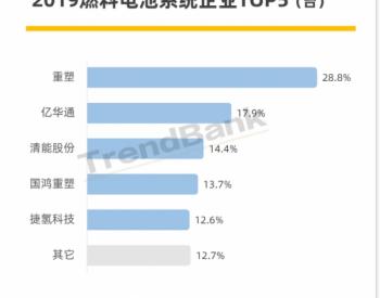 2019车用燃料电池系统TOP5<em>企业</em>市占率直逼九成