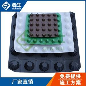 深圳1010g3公分高车库顶板种植防穿刺排水板