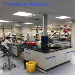 汕头龙湖实验室系统工程 实验室家具 中央台 通风柜 边台