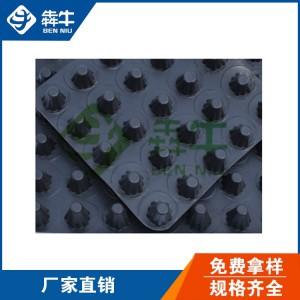 江西凹凸型塑料排水板高强抗压车库顶板排水板
