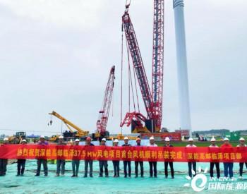 深能江苏高邮临泽项目首台GE风机吊装成功