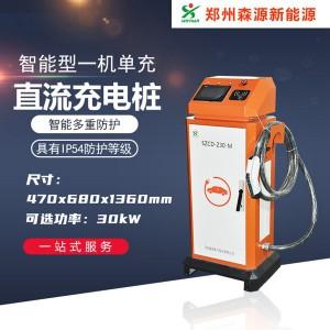 30kw一体式直流充电桩 快速充电桩 充电桩厂家 河南森源