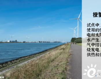 """未来""""氢生活"""",是否符合荷兰年轻人的梦想?"""