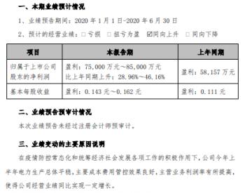 <em>粤电力A</em>2020上半年净利同比预增29%-46%