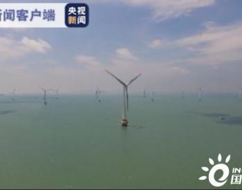 我国单机容量最大的海上风机并网发电 一年可减少燃煤消耗1.3万吨