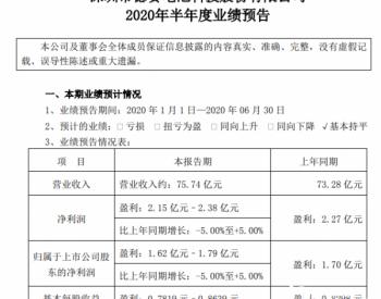 <em>德赛电池</em>预计上半年净利逾1.62亿