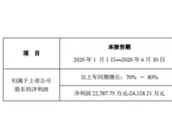 业绩超预期!<em>新宙邦</em>上半年净利润预增70%-80%
