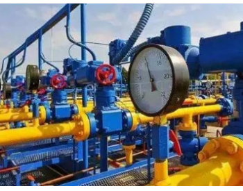 建议优先支持<em>LNG</em>接收站储罐增容与城市<em>LNG</em>储备站建设