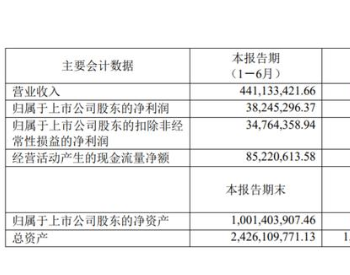 <em>奥特维</em>2020上半年业绩浅析:太阳能光伏/锂电池细分市场趋势明显