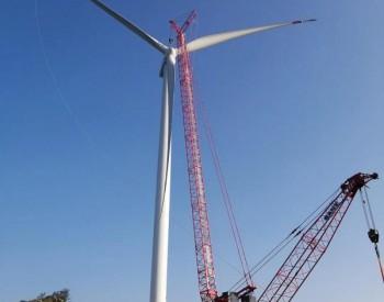 运达股份全力保供,华能100MW山东新泰禹村项目全部机组吊装完成