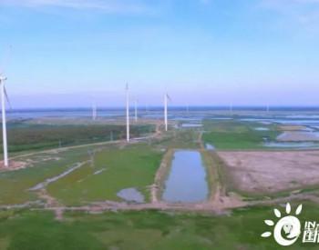 黑龙江平桥风电场项目风机吊装圆满完成